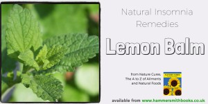 Lemon Balm credit flickr b4ssm4st3r