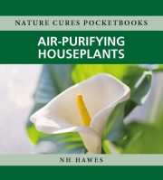 Air purifying houseplants nature cures