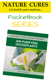 Pocketbook series air purifying houseplants 2