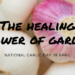 Celebrating the Healing Power of Garlic
